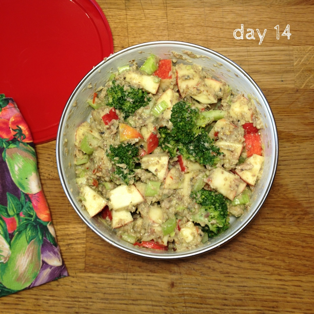 day14_curried_sardines_broccoli_apple_lunch_salad.jpg