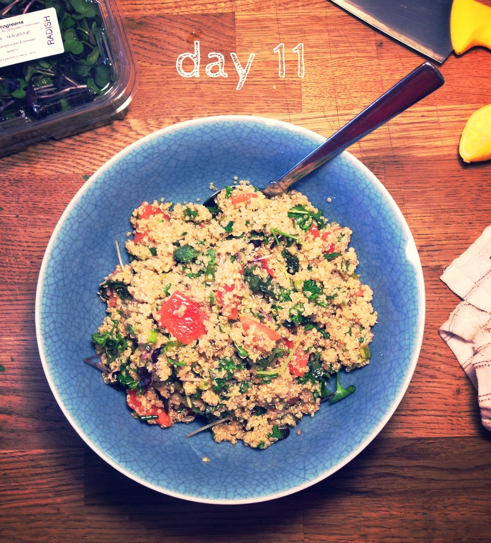 day11_watermelon_sprouted_quinoa_herb.jpg