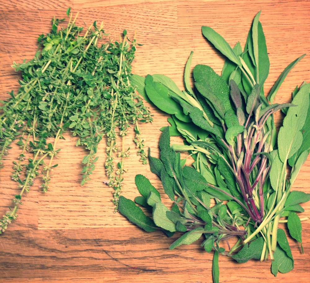 Lemon thyme and sage. Garden companions destined for tasty salads.