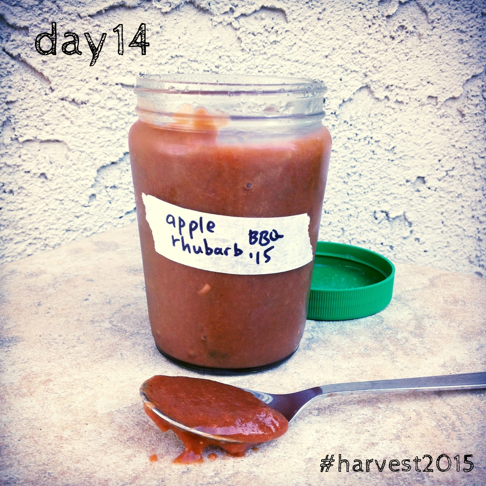 Apple Rhubarb BBQ Sauce. Easy to omit nightshades for AIP compliance. #harvest2015