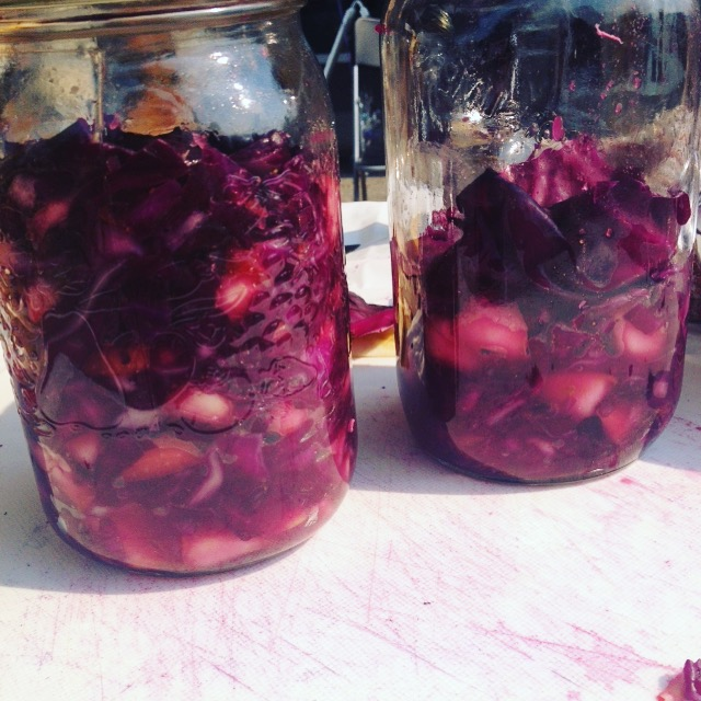 Red cabbage fuji curry kraut. #harvest2015