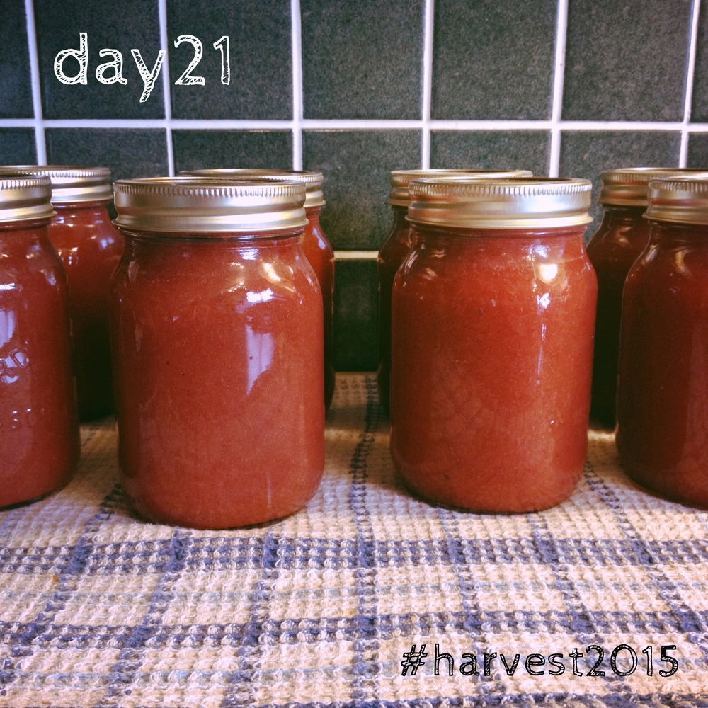 My sister's crabapple butter, summer in a jar. #harvest2015
