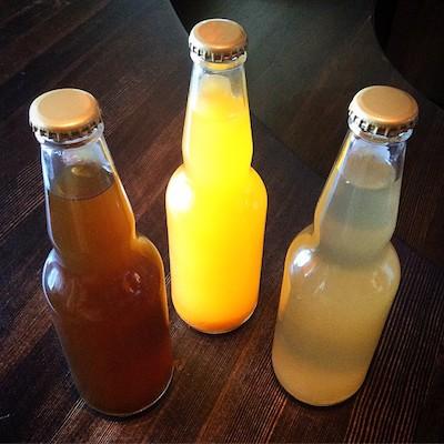 Be Your Own Soda-Maker: Learn How to Craft Probiotic Kombucha, Jun & Water Kefir Sodas