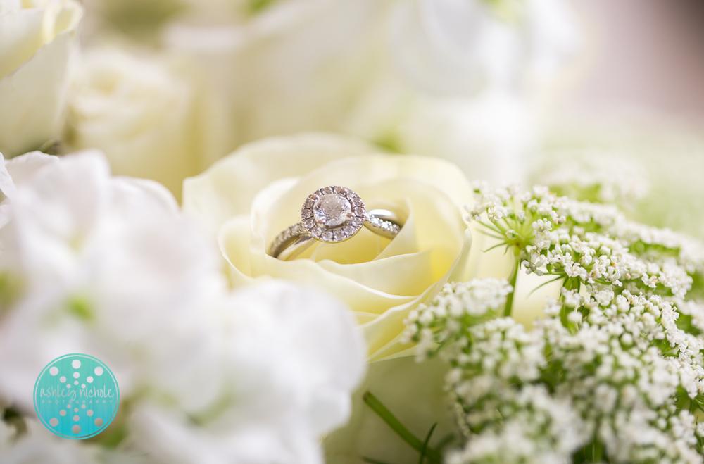 Marasa Wedding 9.26.15- ©Ashley Nichole Photography-99.jpg
