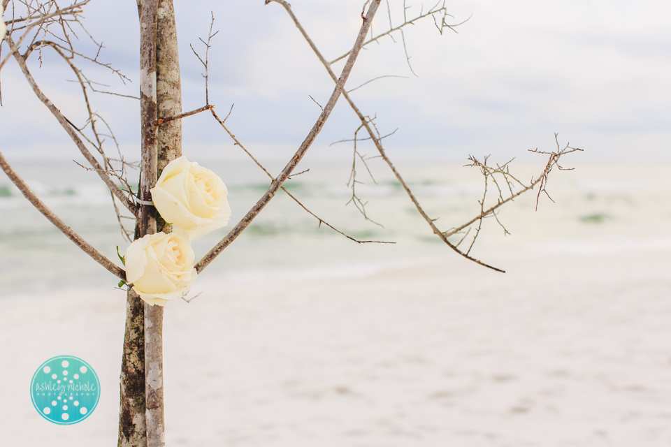 ©Ashley Nichole Photography- Highlands House Wedding- 30A- Santa Rosa Beach-32.jpg
