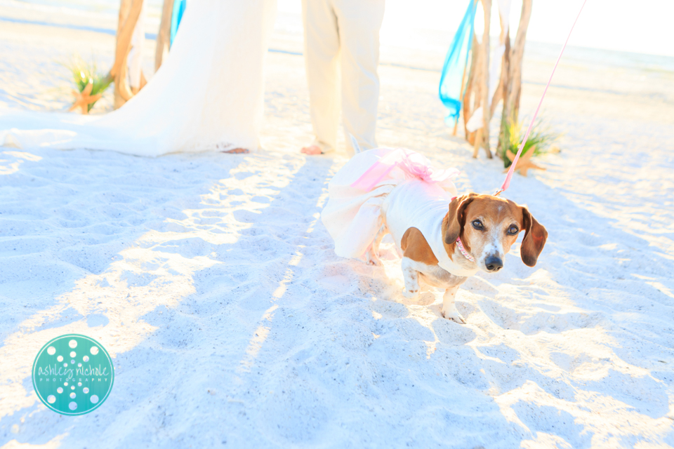 ©Ashley Nichole Photography- Florida Wedding Photographer- Anna Maria Island-71.jpg