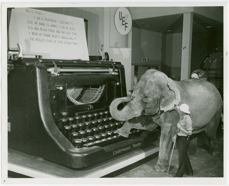 Typewriter&Elephant.jpg