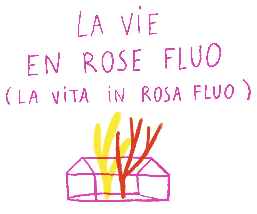 La vie en rose fluo casetta.png