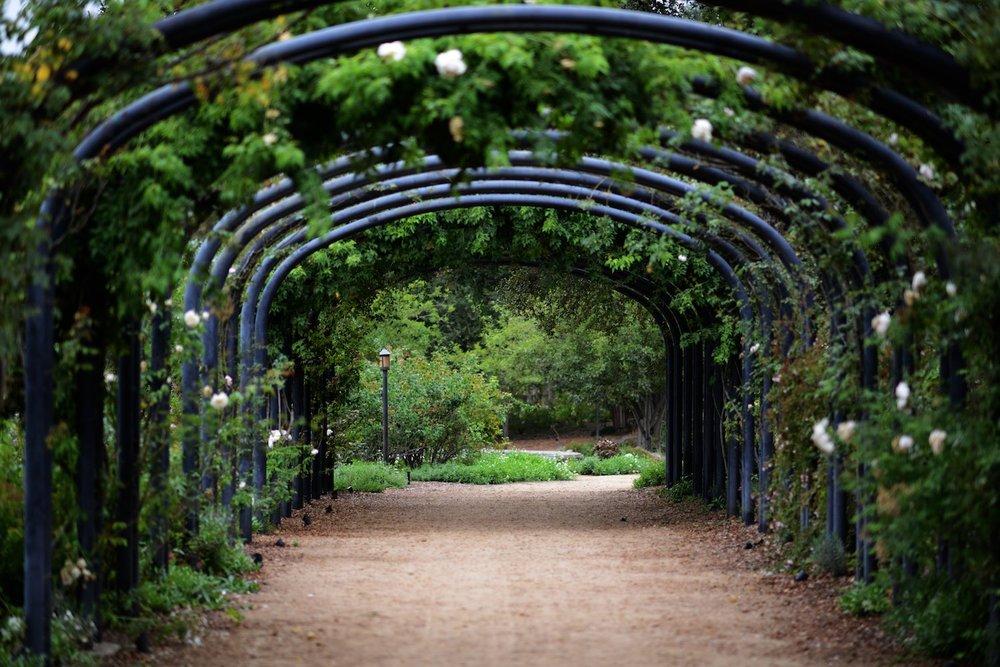 descanso-gardens-michal-pfeil-20.jpg