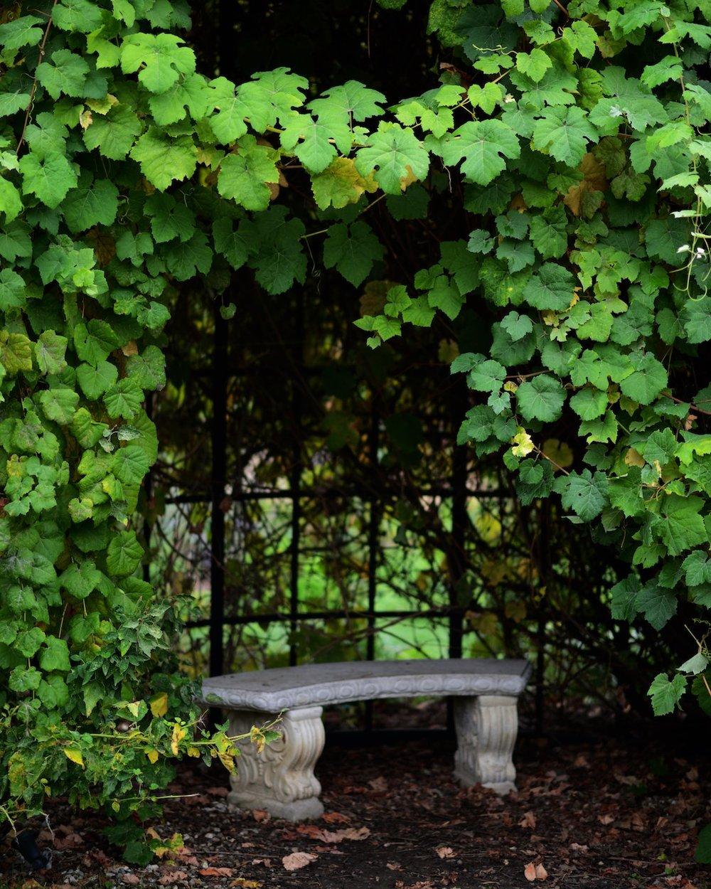 descanso-gardens-michal-pfeil-25.jpg