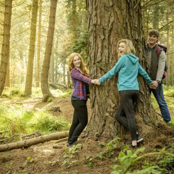 Family Tree Research Ireland XO.jpg