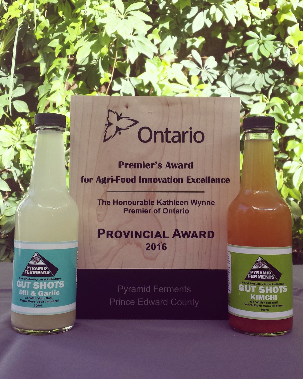 "We're honoured to have received our second Premiers award for Agri-food Innovation for our 'Gut Shots'. #GoWithYourGut   ""When Jenna Empey and Alex Currie began offering Gut Shots, people lined up - not for a punch to the stomach, but for 300 millilitres of probiotic-rich tonic that punches up the levels of healthy bacteria in their digestive system. The product proved so popular at farmers' markets that Empey and Currie are now marketing to retail outlets and discussing partnerships with juice companies. The tonic is simply the brine left over from their main activity: producing kimchi, sauerkraut and other fermented foods. This former waste product accounted for 13 per cent of their sales in 2015, and they expect that number to double in 2016. To keep up with demand for the tonic, they've tripled kimchi and sauerkraut production - a boon for local cabbage producers."""