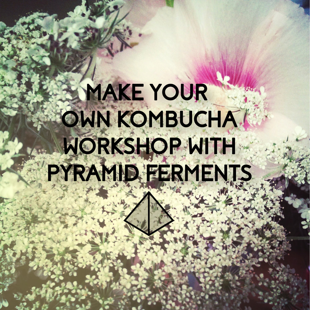 Kombucha Workshop.jpg
