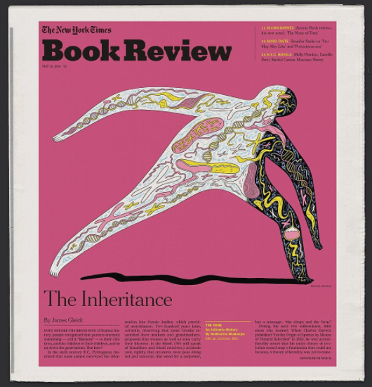 New York Times Book Review