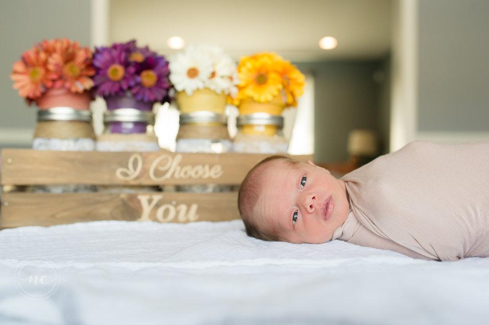 Fall Inspired Newborn Image  www.natashachiaviello.com