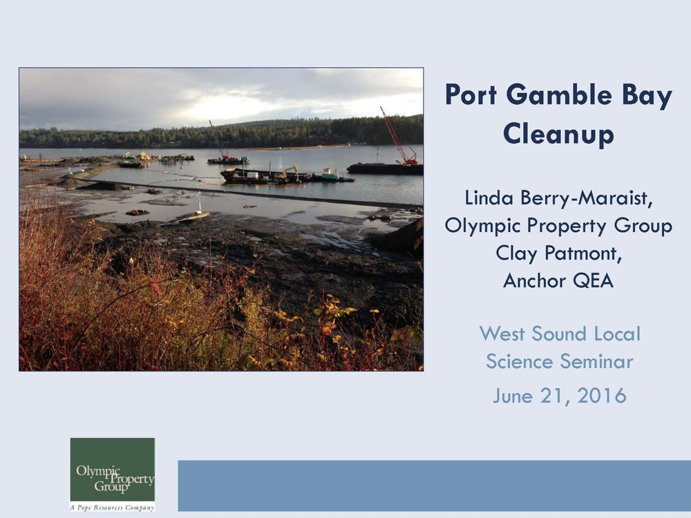 PortGamble Cleanup_Presentation_v2 page 1.jpg