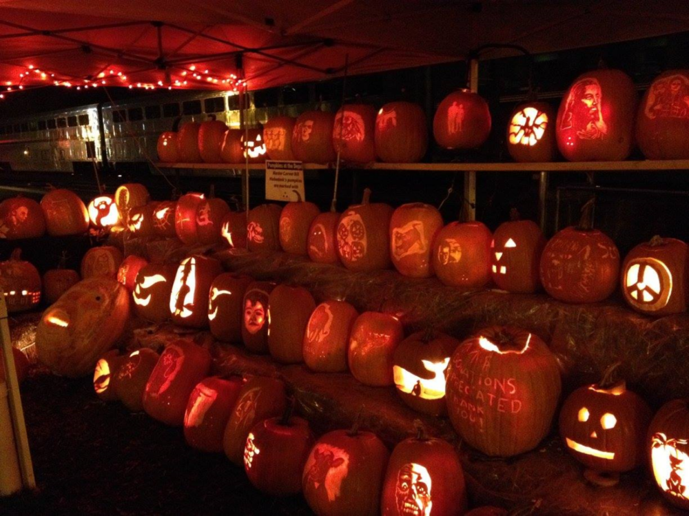 The pumpkins look great during the day. They have a different look at night.
