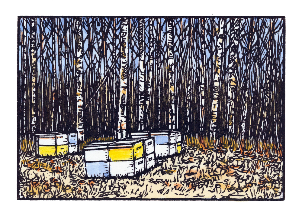 Bradley Hall - Booth 49 Hand watercolored linoleum block prints. Signed & numbered. Framed in Barn wood.