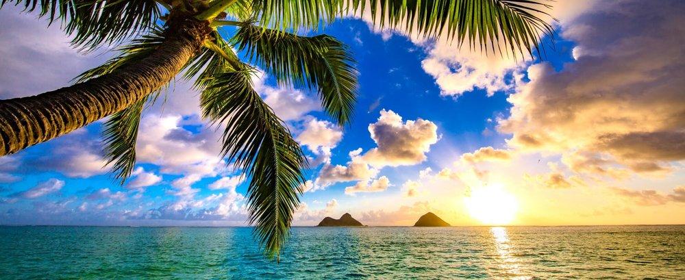 hawaii stock.jpg