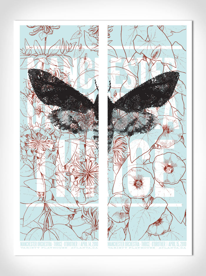 moth21.jpg