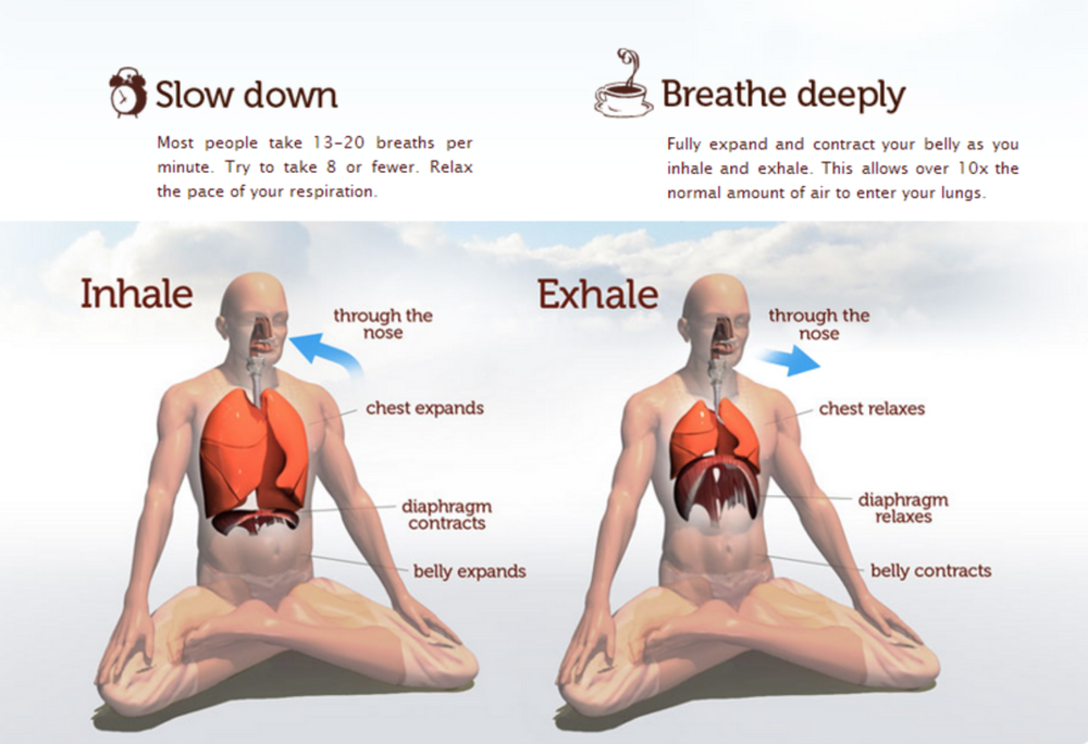 Retrieved from http://www.saagara.com/learning-center/deep-breathing-pranayama-guide