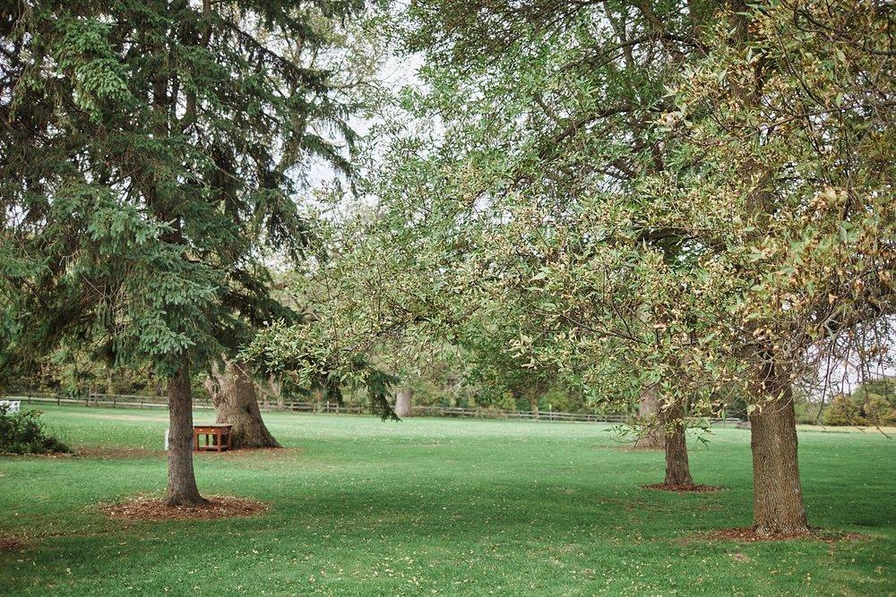 Maywood-Stone-Barn-Wedding-Rochester-Minnesota-Perry-James-Photo_0531.jpg