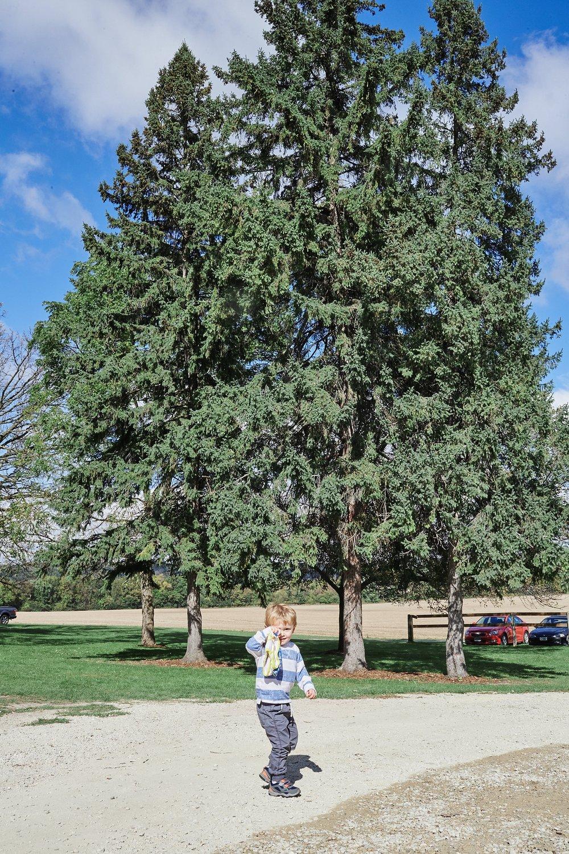 Maywood-Stone-Barn-Wedding-Rochester-Minnesota-Perry-James-Photo_0556.jpg