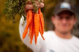 carrots-300x199.jpg