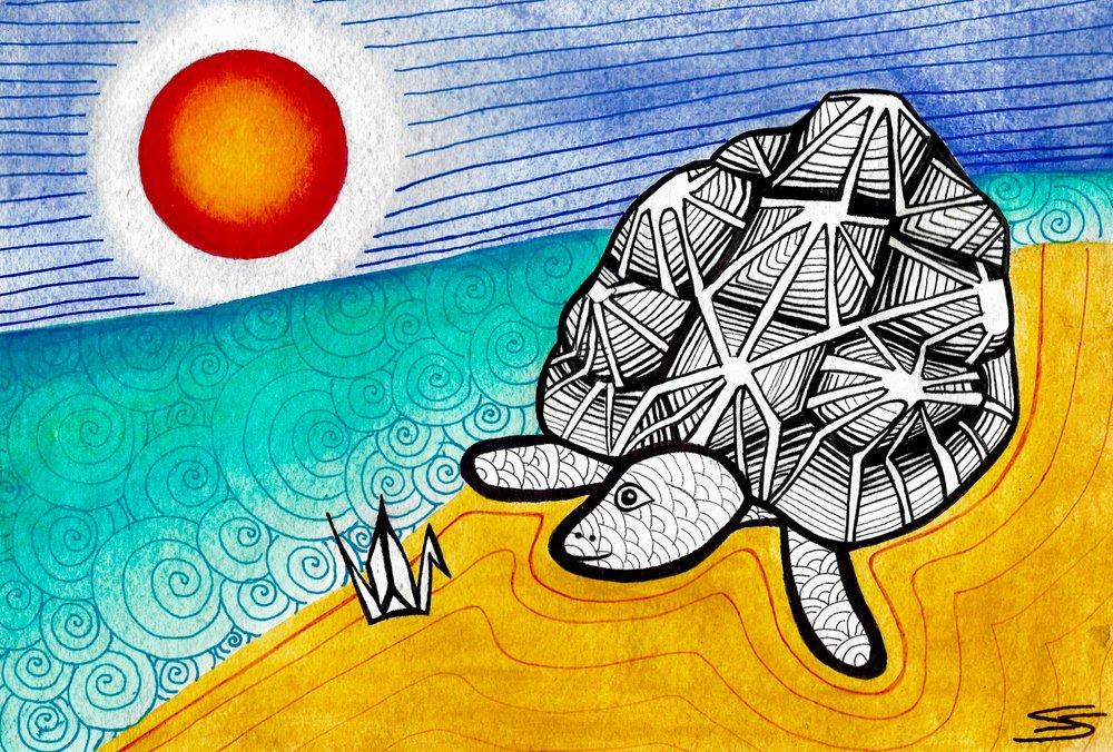 Turtle 3 (1).jpg