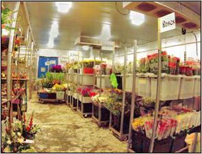 florist-wholesalers