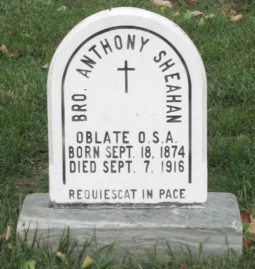 Sheahan Antony-17.jpeg