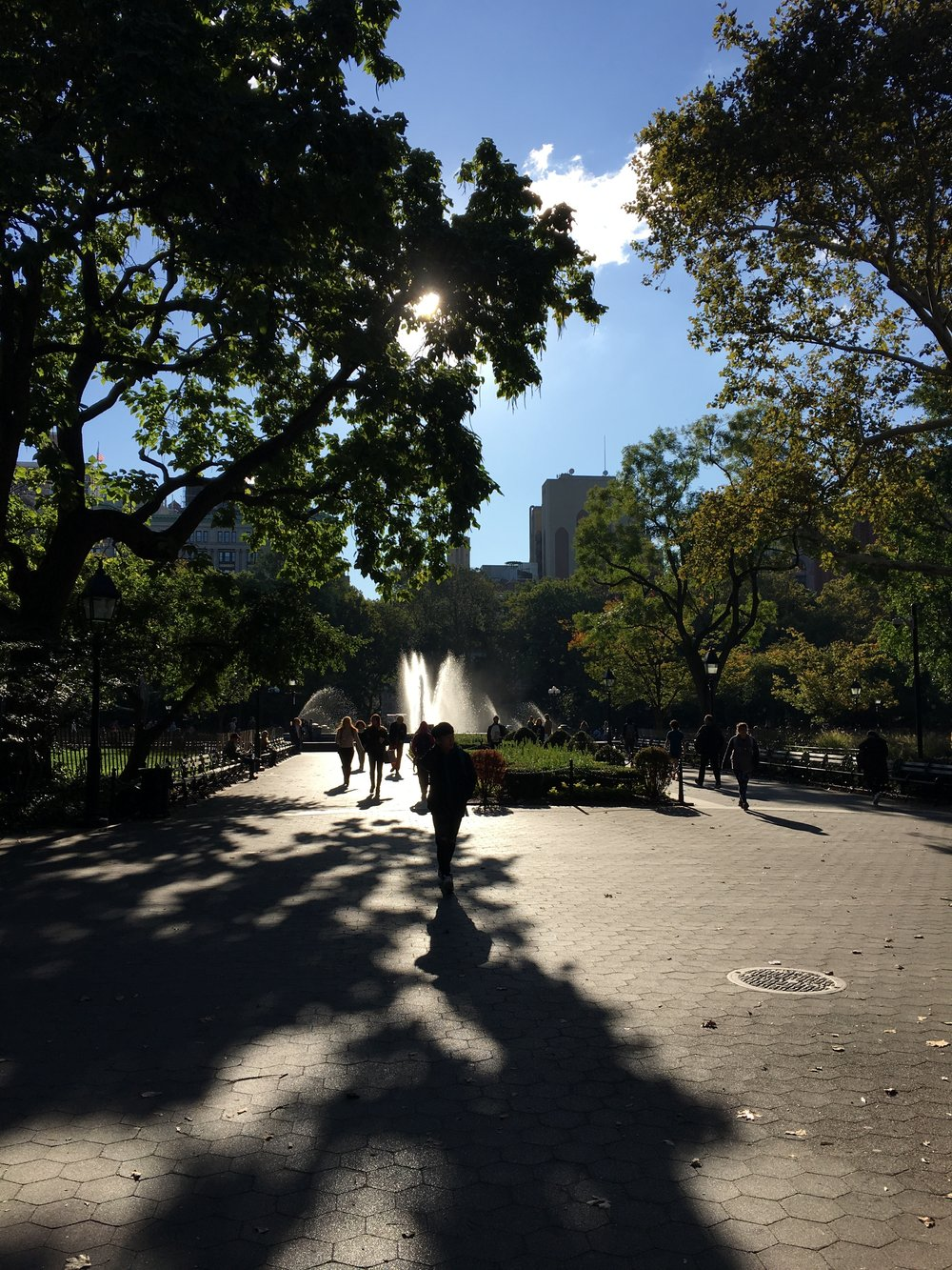 NYU in the Fall