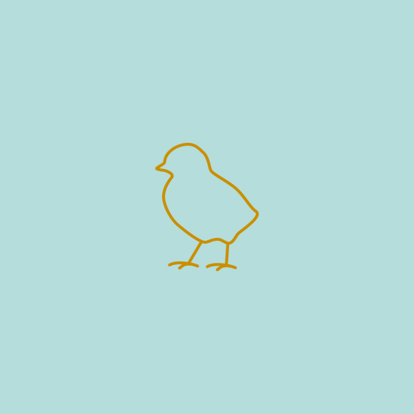 Chick_DesignAhoy.jpg