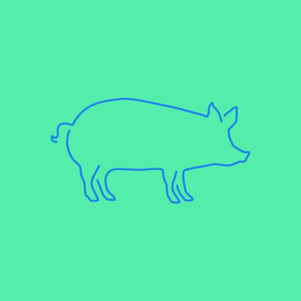 Pig_DesignAhoy.jpg