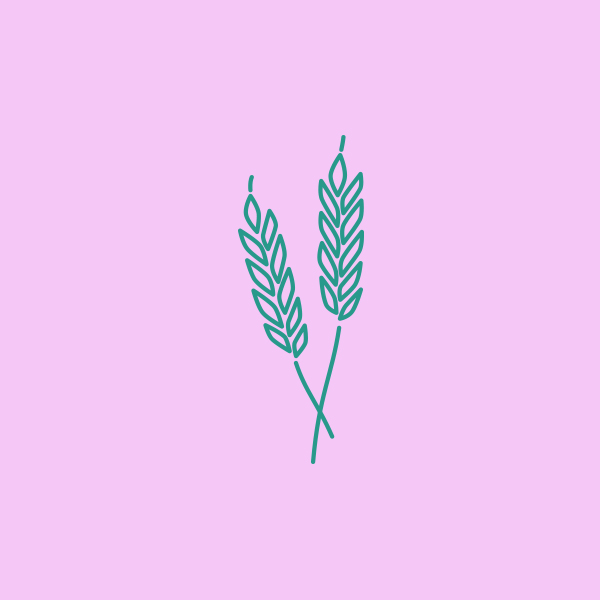 Wheat_DesignAhoy.jpg
