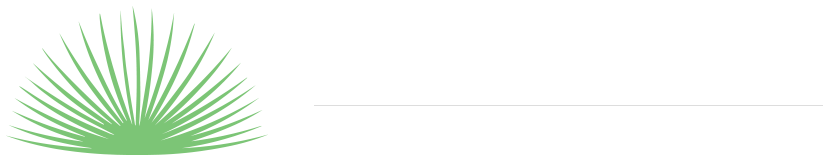 Palms at Park | Official Site | Palm Springs Vacation Rentals - Brand New Luxury 5 and 6 Bedroom Vacation Homes