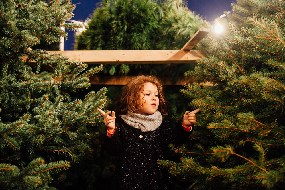 christmas tree picking.jpg