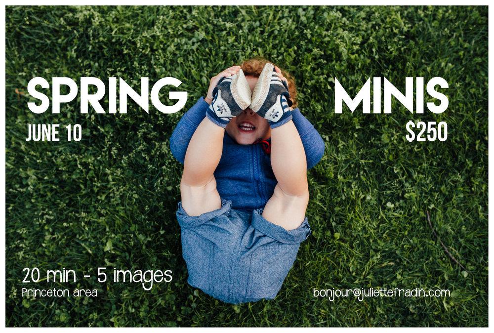 spring mini IAS 2017-0211.jpg