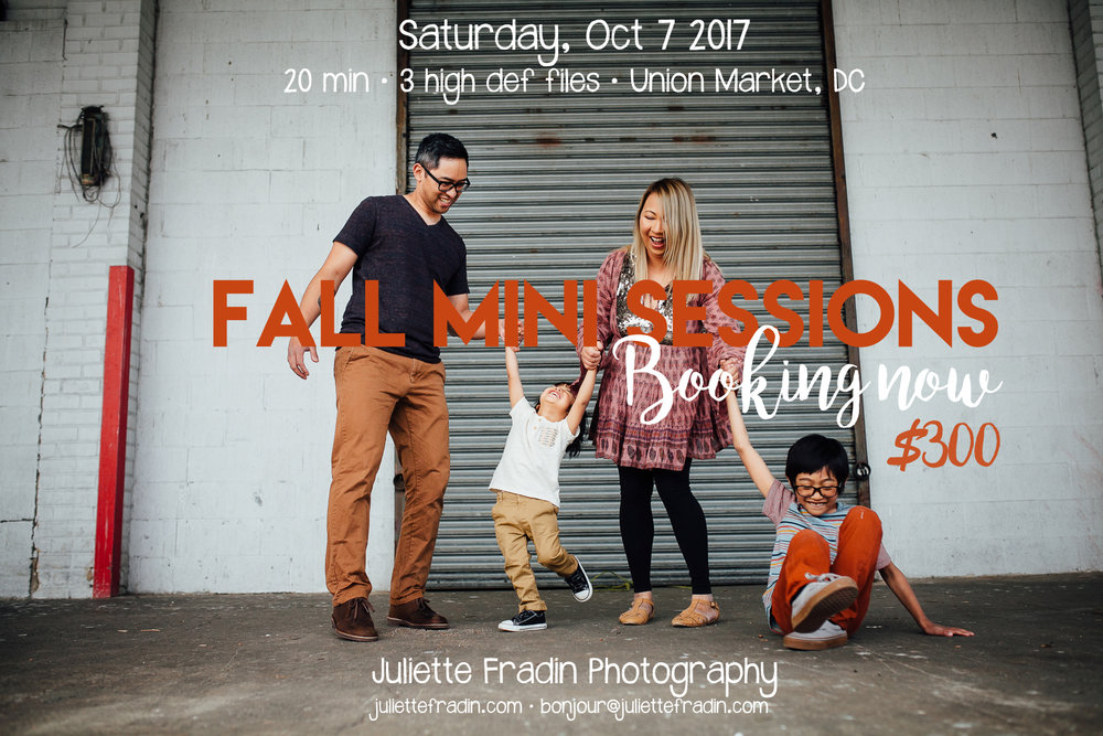 Fall mini session Union Market
