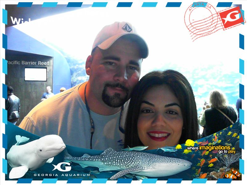 Attractions - Georgia Aquarium.jpg