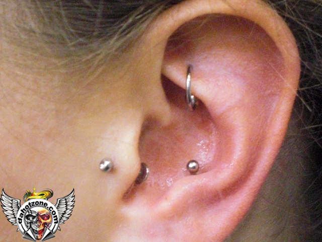 Rook tragus inner conch
