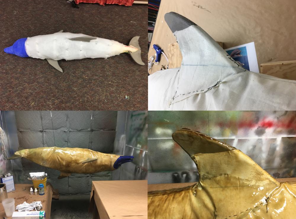 Dead Dolphin Skin