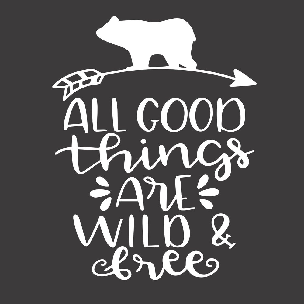 12x12 all good things are wild and free.jpg