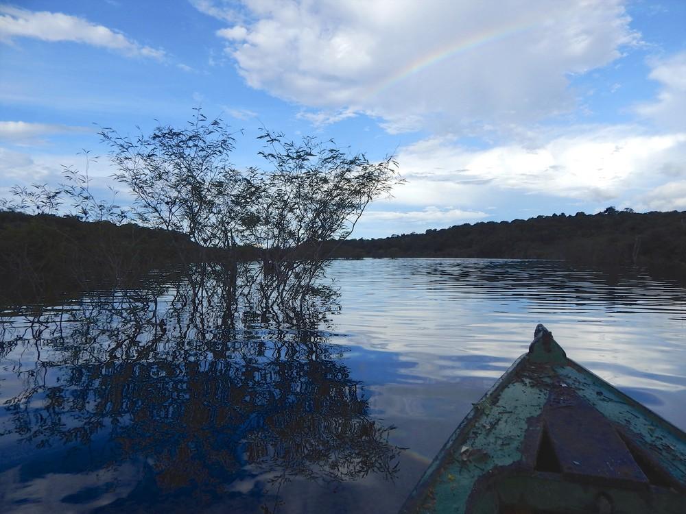 The Rio Negro - The Black River.jpg