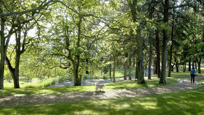 Sorosis Park 03 - 16x9.jpg