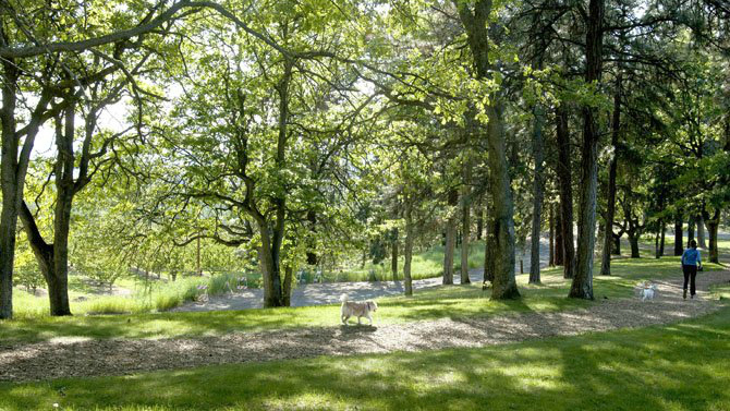 Sorosis Park