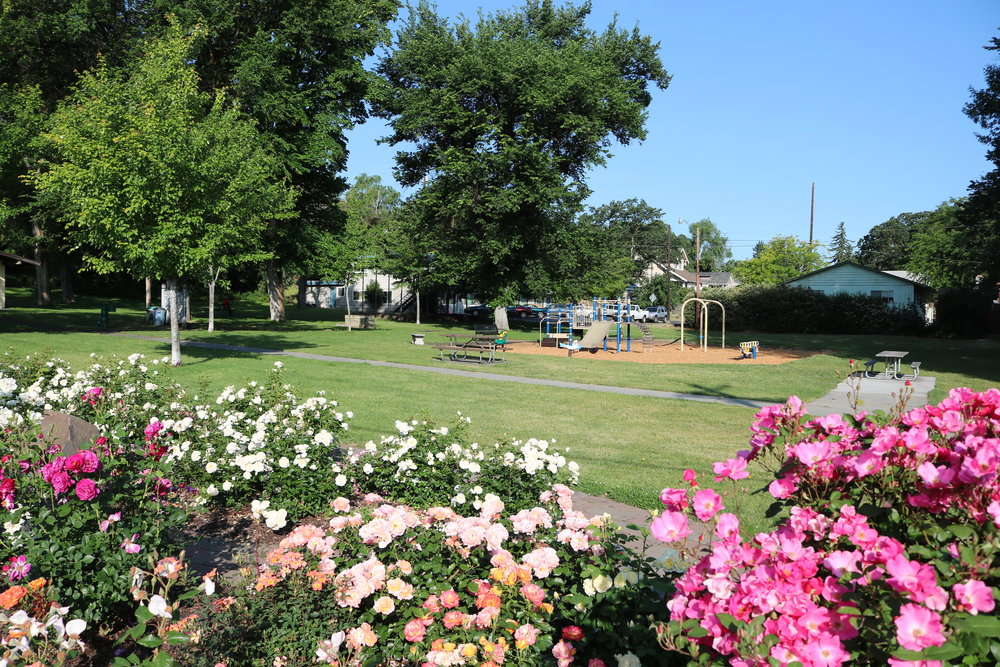 City Park.JPG