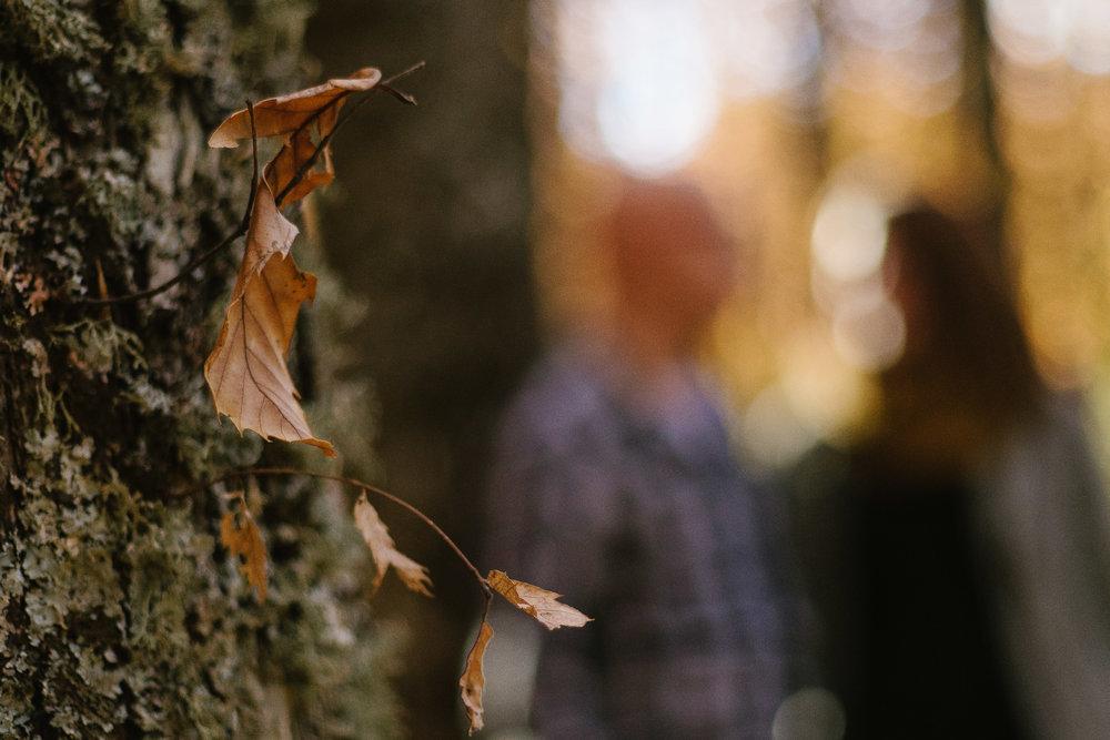 preboda-en-otoño-14.jpg