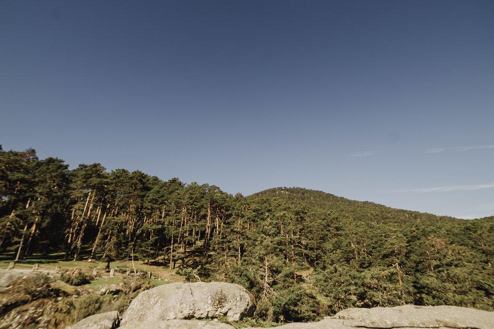 preboda-en- bosque-1.jpg
