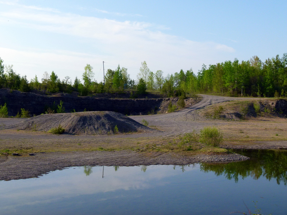 Combined Natural Environment Level 1 & 2, and Detailed Environmental Impact Statement to Support Aggregate Licensing for the Hallville Quarry - Mountain, Ontario